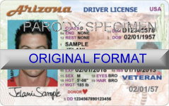 Arizona Fake ID
