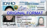 Idaho Fake ID
