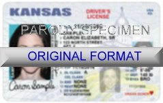 Kansas Fake ID Template Small