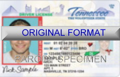 Tennessee Fake ID Template Small